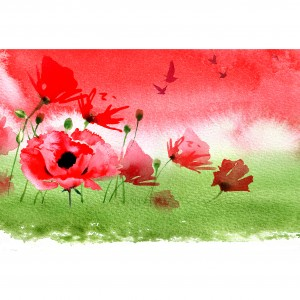 Centenary Remembrance Stamps - background