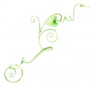 WINE MAKERS - Catalogue - decorative icon