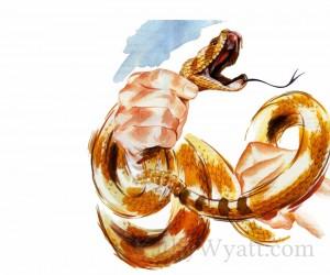READERS DIGEST -The Snake Hunter