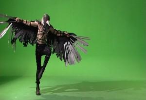 35 birdman 3
