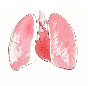 MEDICAL POSTER -Lungs