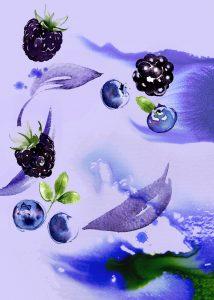 SAINSBURYS - Berry Infusion