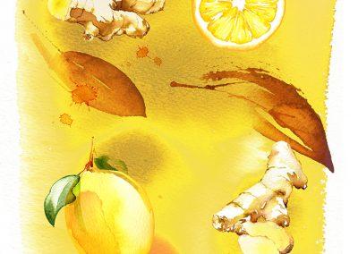 SAINSBURYS - Lemon & Ginger Tea