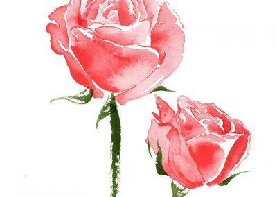 MELVITA ...Rose