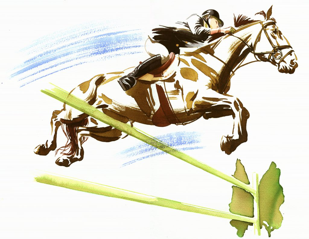 Illustration Wildlife The Independant Horse Jumping Show Jumping Sport