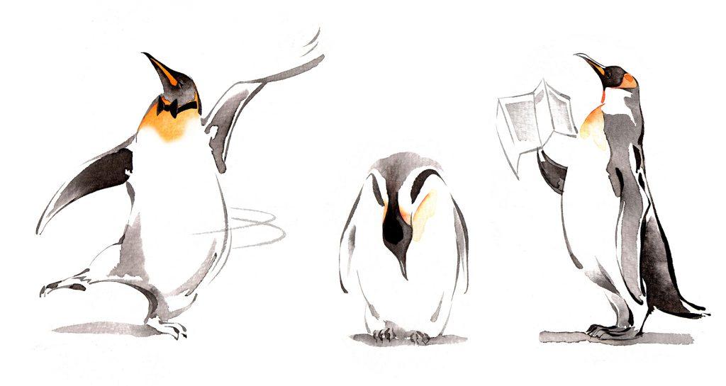 Illustration Wildlife USCollege Emperor Penguin Mascot Anthropomorphic Anthroporphism