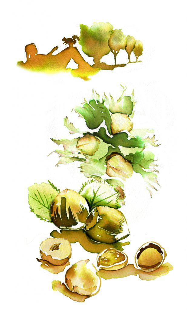 Illustration Wildlife Kolln Hafe Porridge Packaging Squirrel Scenic Nuts
