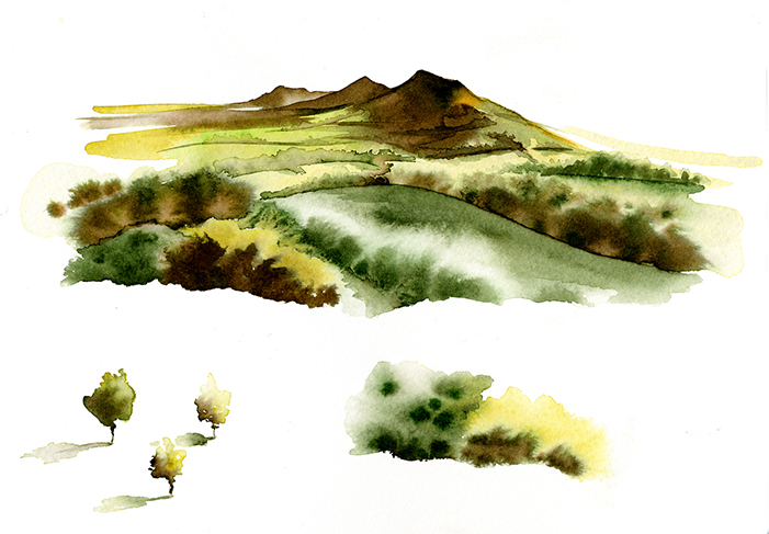 Illustration Scenic McClelland Whisky Packaging Scotland Scottish Highlands Watercolour
