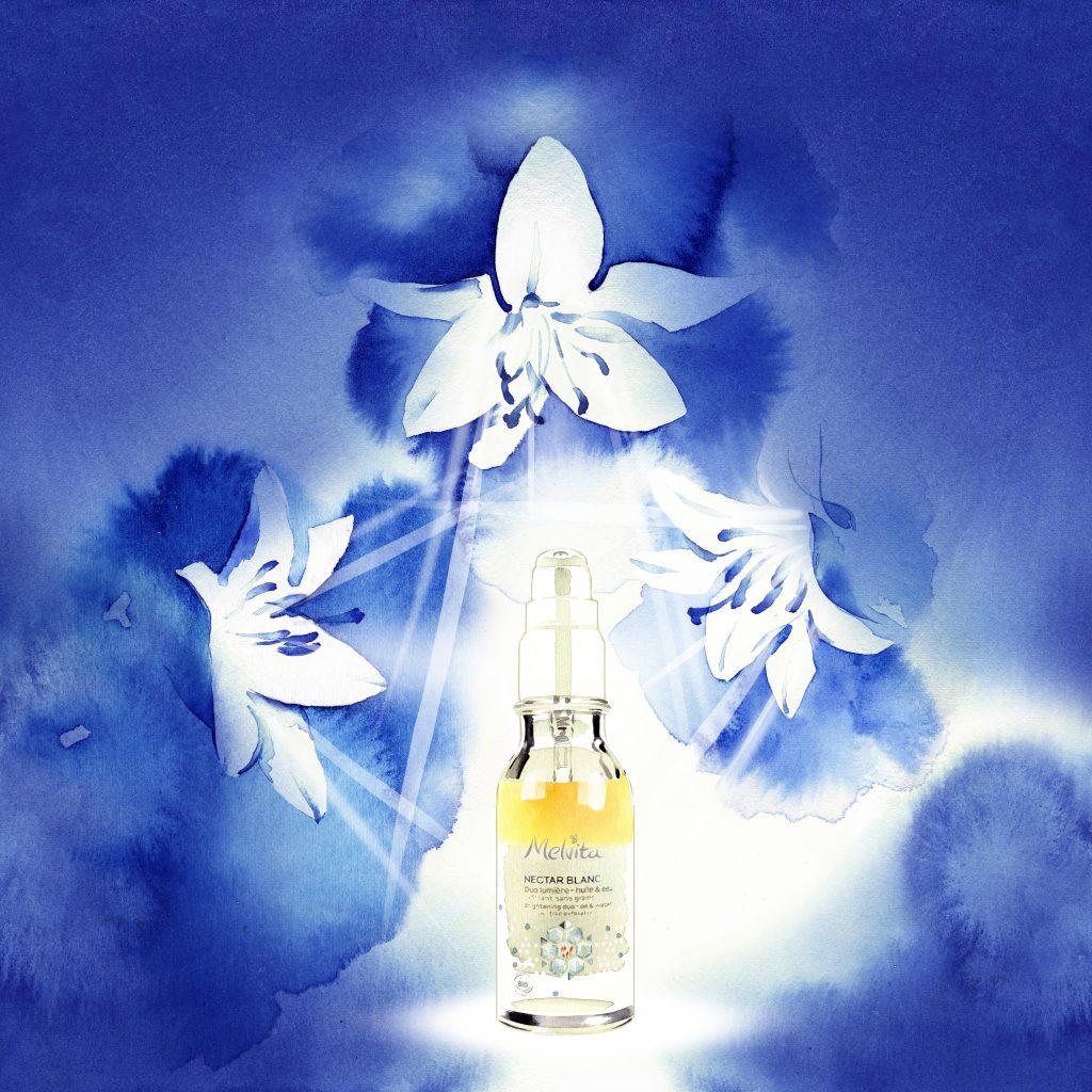 Illustration Flora Melita Nectar Blanc Lily Graphic Watercolour Poster