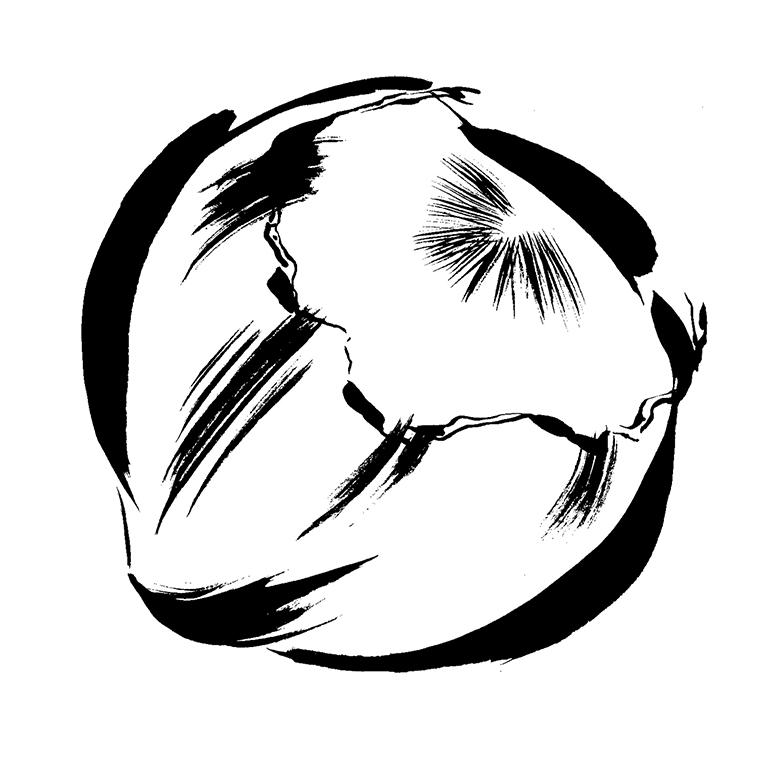 Illustration Line Milo Hazlenut Vector