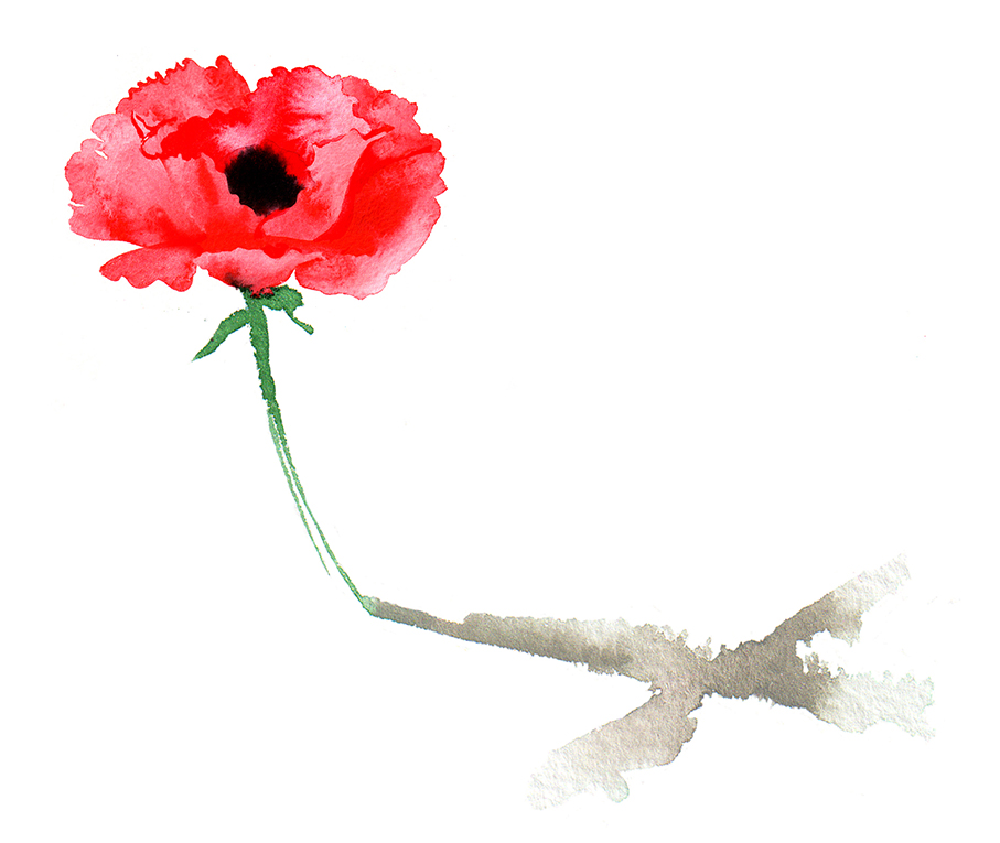 Illustration Conceptual Jersey Stamps Collectable Remembrance Poppy