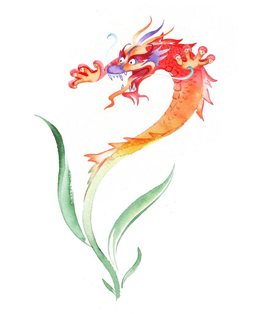 Illustration Conceptual Icon Logo Thai Rice Packaging Dragon