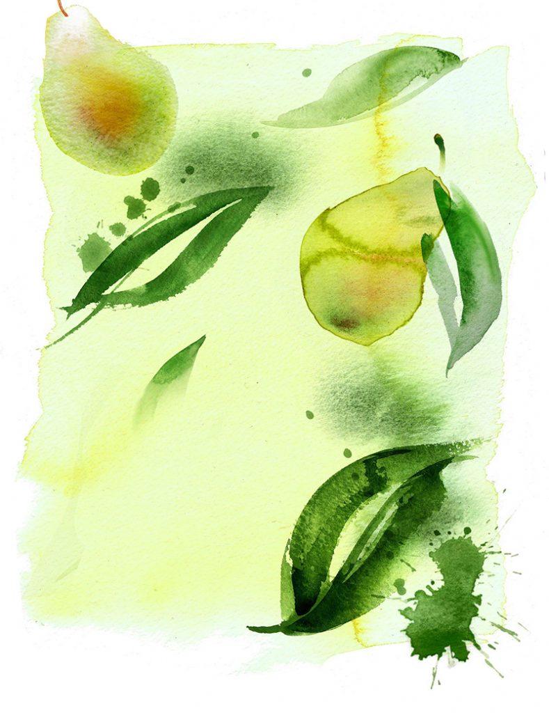 Illustration Food Drink Sainsburys Supermarket Pear Infusion Tea Cold Brew Packaging