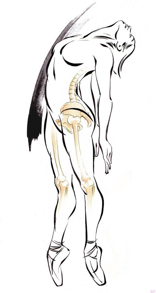 Illustration Medical Anatomy And Movement Dancer