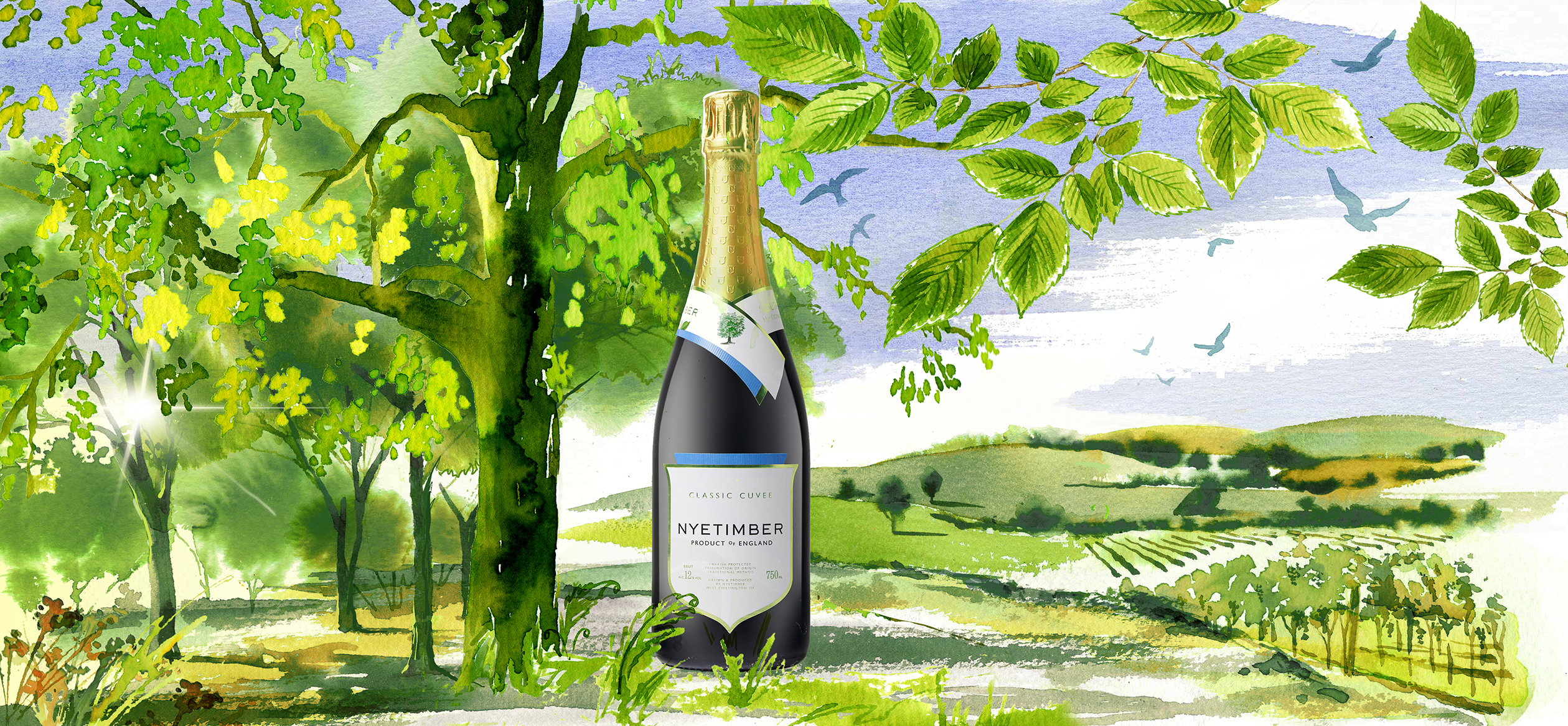 Illustration Projects Packaging Nyetimber Sparkling Wine Wines Online Publicity